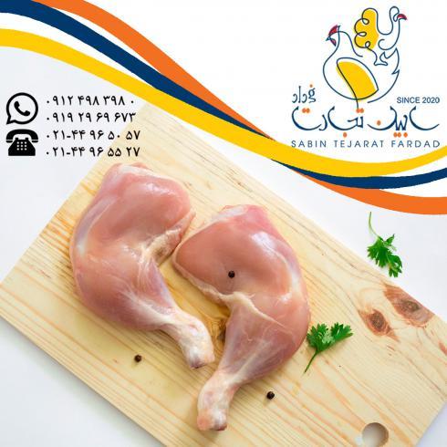 فروش ران سایز مرغ سابین تجارت