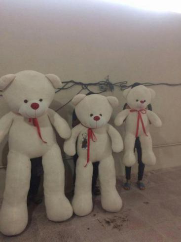 فروش انواع عروسک های خرسی با قیمت عمده