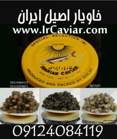 خاویاراصل شیلات سوغات ایران
