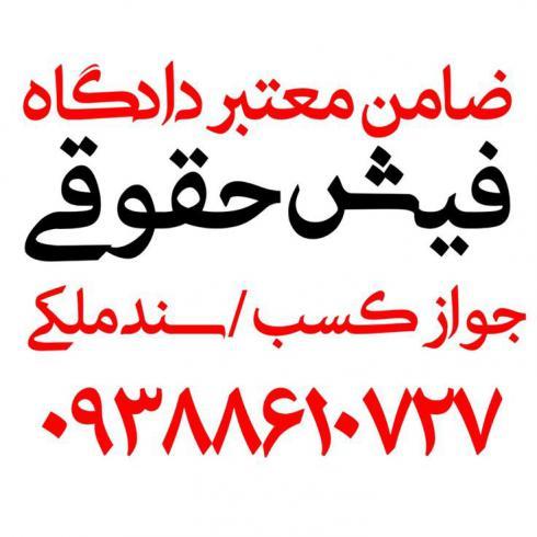 ضامن دادگاه/ضامن دادگاه و دادسرا/فیش حقوقی برای دادگاه/ضامن کارمند برای دادگاه