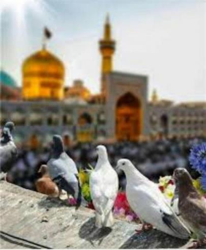 تور هوایی مشهد ( تعطیلات آخر هفته )