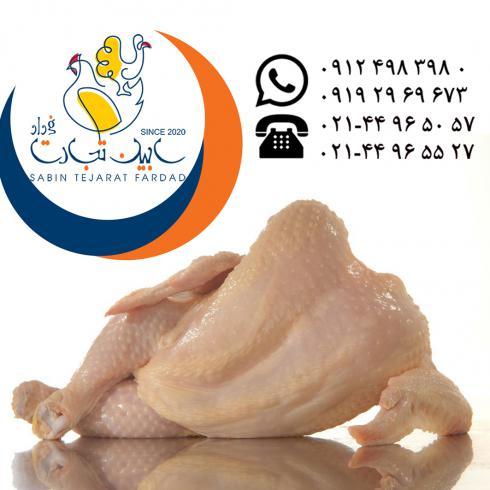 تامین و عرضه گوشت مرغ منجمد سابین تجارت
