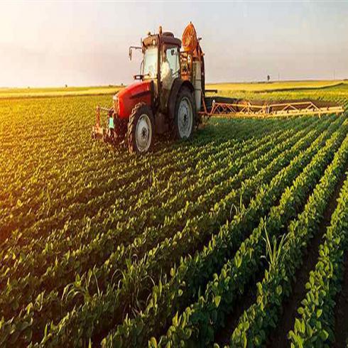 فروش شرکت رتبه 5 کشاورزی و فضای سبز