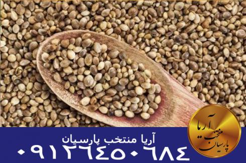 فروش انواع بذر
