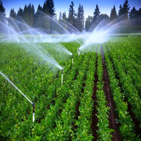 فروش شرکت مسئولیت محدود آب و کشاورزی تهران