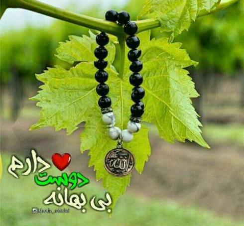 ترجمه عربی