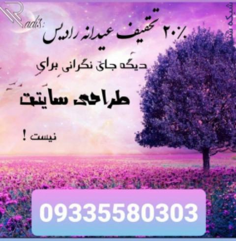 تخفیف عیدانه طراحی سایت رادیس افزار