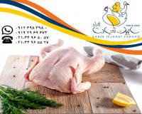 فروش سایزهای مختلف مرغ منجمد سابین تجارت