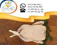 تامین و عرضه گوشت مرغ سابین تجارت