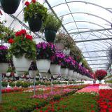 خرید و فروش و احداث گلخانه نو و دست دوم