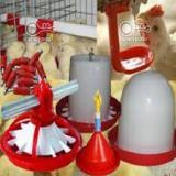 فروش تجهیزات مرغداری