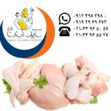 فروش قطعه بندی گوشت مرغ سابین تجارت