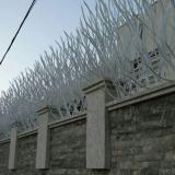 حفاظ شاخ گوزنی(رو دیواری)
