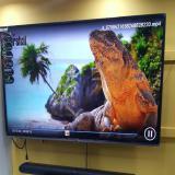 نمایندگی و فروشگاه مرکزی مارشال - تلویزیون LED 4K