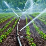 فروش و واگذاری شرکن آب و کشاورزی