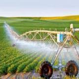 فروش شرکت گرید 4 کشاورزی