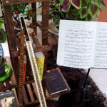 آموزش تخصصی آواز سلفژ صداسازی و تار و سه تار