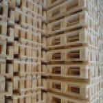 خرید و فروش انواع پالت چوبی و پلاستیکی و ضایعات چوبی