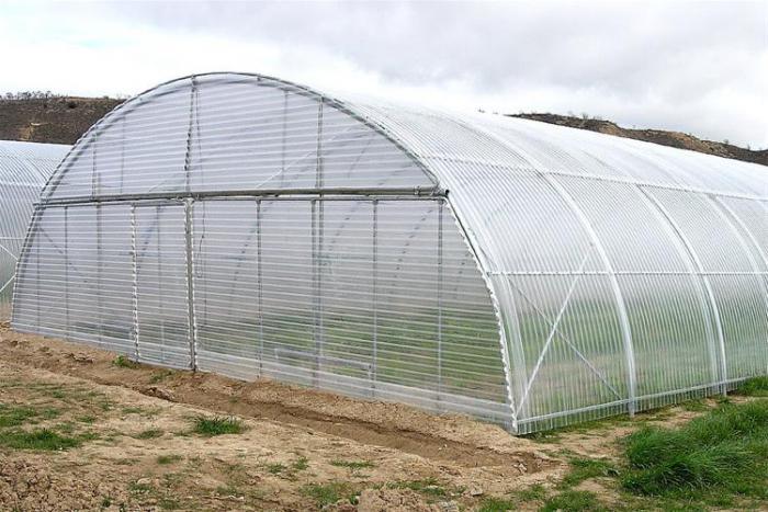 فروش تجهیزات گلخانه شیشه ای ، تونلی ، اسپانیایی